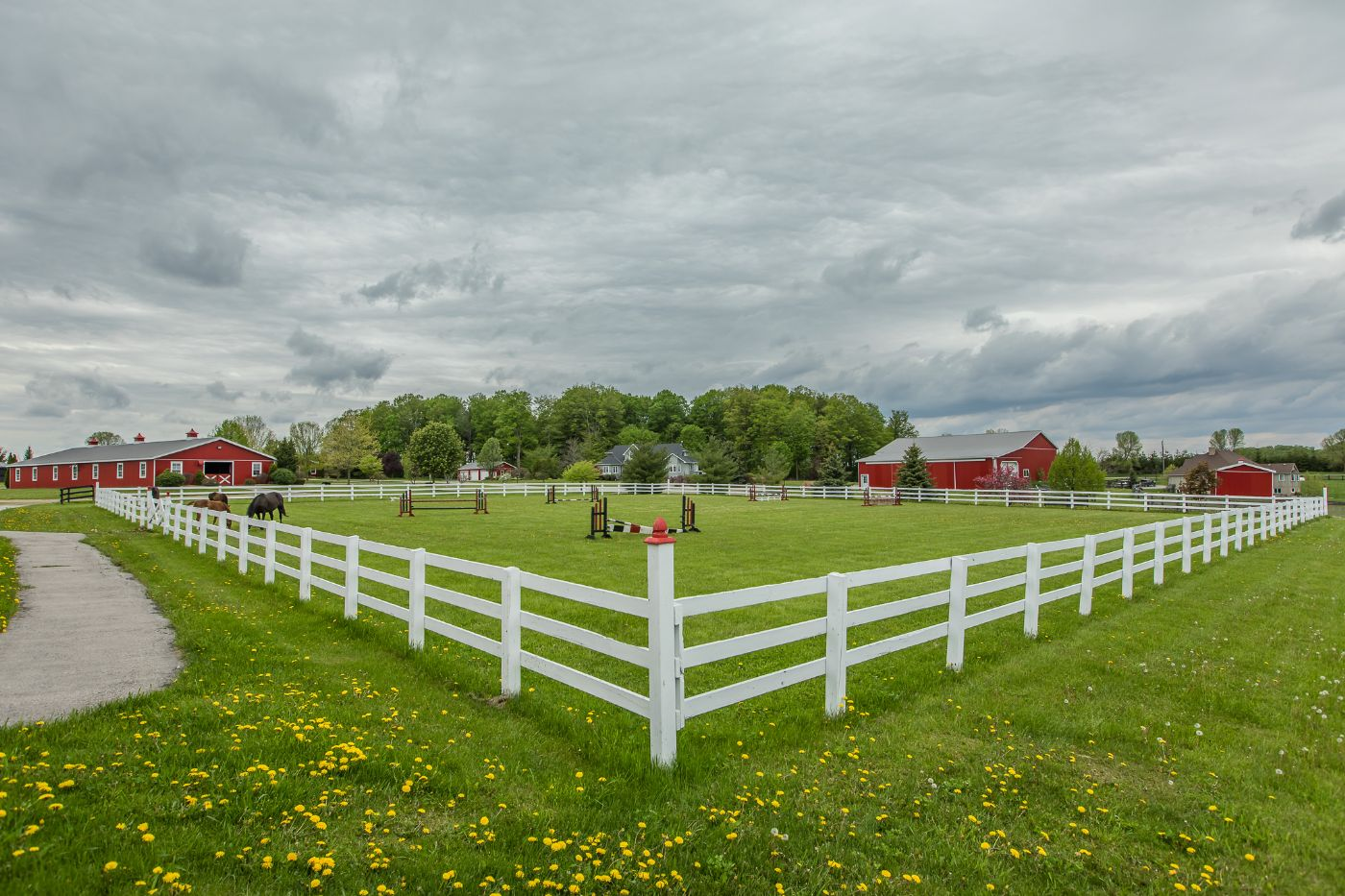 Schomberg Equestrian Estate Caledon Country Homes Luxury