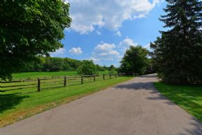 Long Drive up to Residence - Country homes for sale and luxury real estate including horse farms and property in the Caledon and King City areas near Toronto