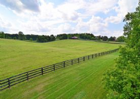 Hockley Valley, 50 Acres - Country Homes for sale and Luxury Real Estate in Caledon and King City including Horse Farms and Property for sale near Toronto