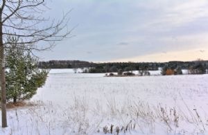 35 Acres, South Mono, Ontario - Country homes for sale and luxury real estate including horse farms and property in the Caledon and King City areas near Toronto