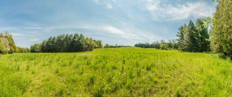 Western Fields with Hiking Trail - Country homes for sale and luxury real estate including horse farms and property in the Caledon and King City areas near Toronto