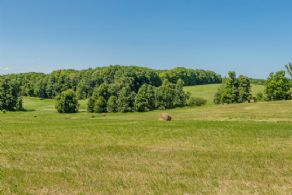 Views to West - Country homes for sale and luxury real estate including horse farms and property in the Caledon and King City areas near Toronto