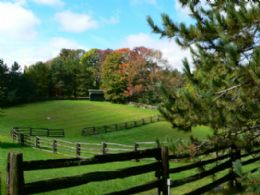 Rolling Paddocks - Country homes for sale and luxury real estate including horse farms and property in the Caledon and King City areas near Toronto