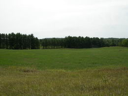 Lovely 2.5 Acres in Mono - Country Homes for sale and Luxury Real Estate in Caledon and King City including Horse Farms and Property for sale near Toronto