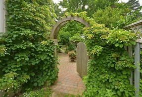 Gate to Back Yard - Country homes for sale and luxury real estate including horse farms and property in the Caledon and King City areas near Toronto